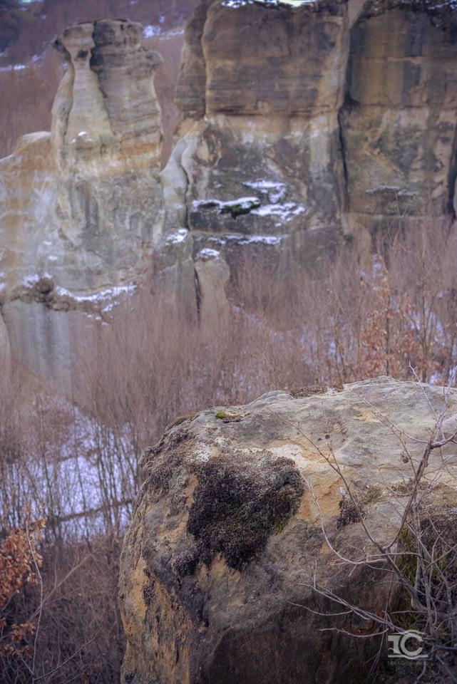 gradina-zmeilor-02-2015-040