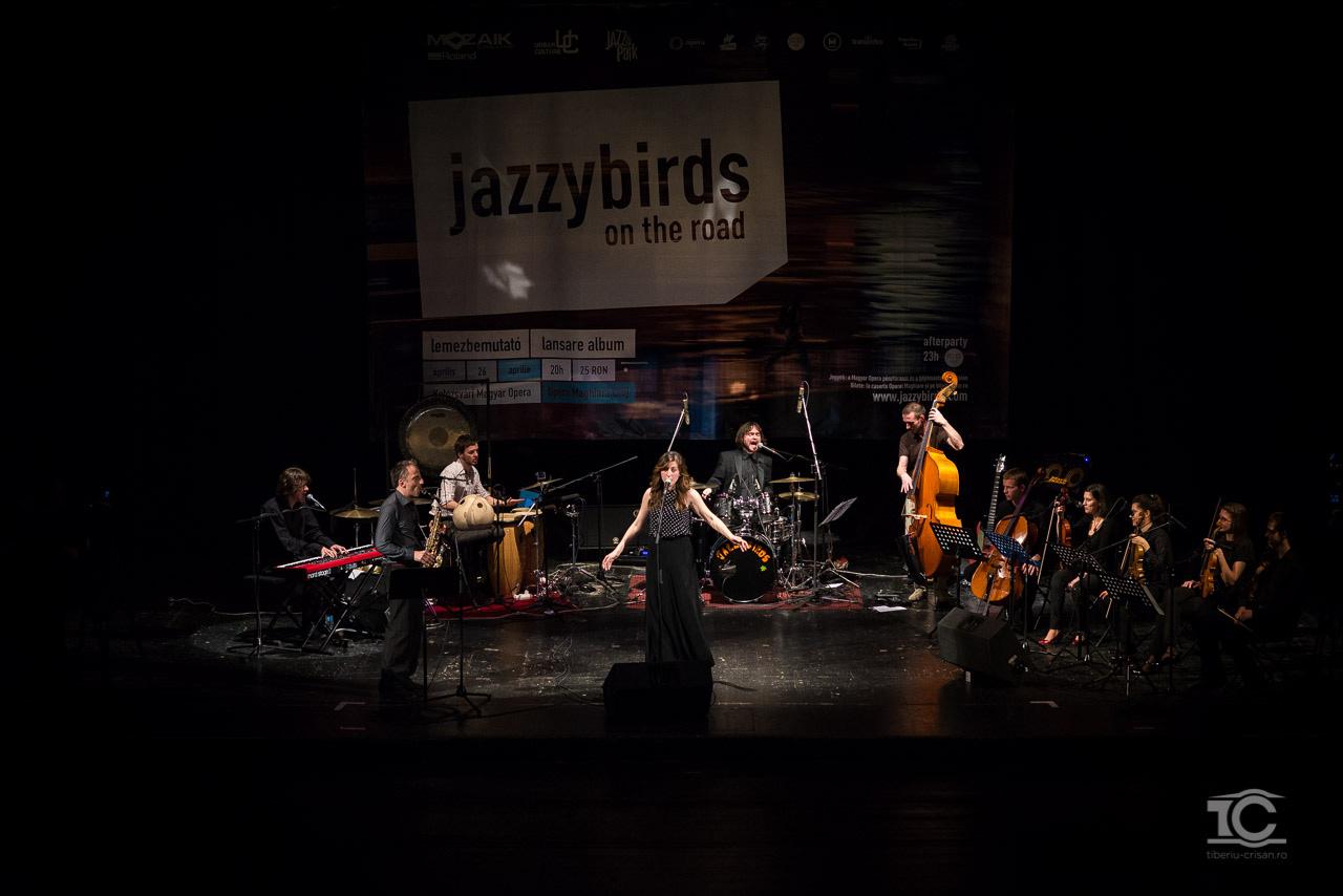 lansare-album-jazzybirds-0027