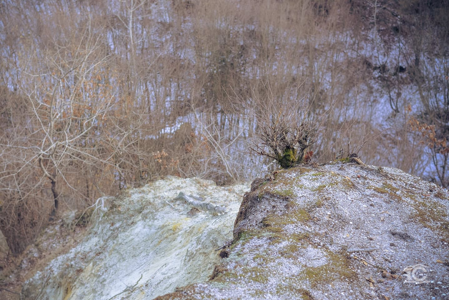 gradina-zmeilor-02-2015-032