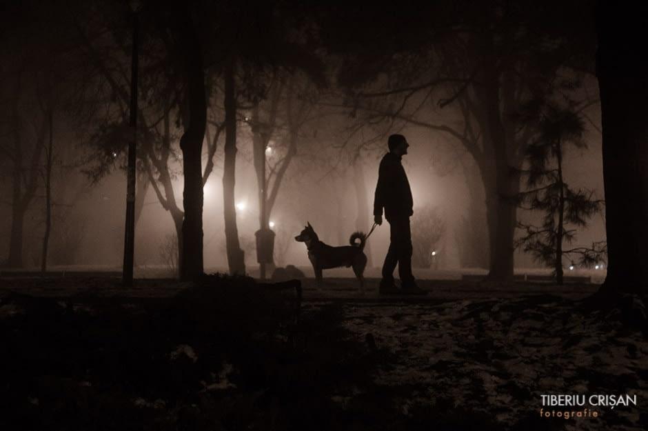 noapte-cu-ceata-in-parc-11
