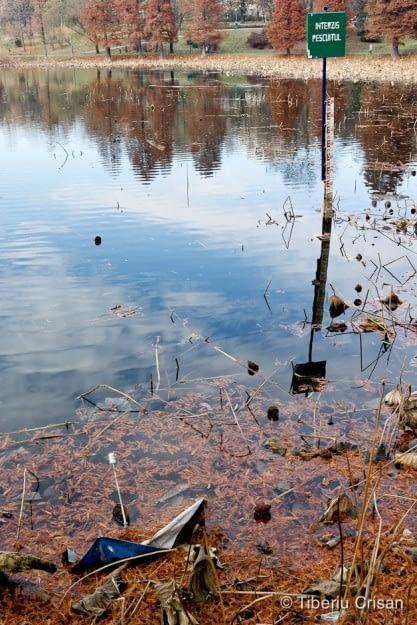 Lacul din Parcul Circului, cu semnul Pescuitul Interzis si umbrela parasita