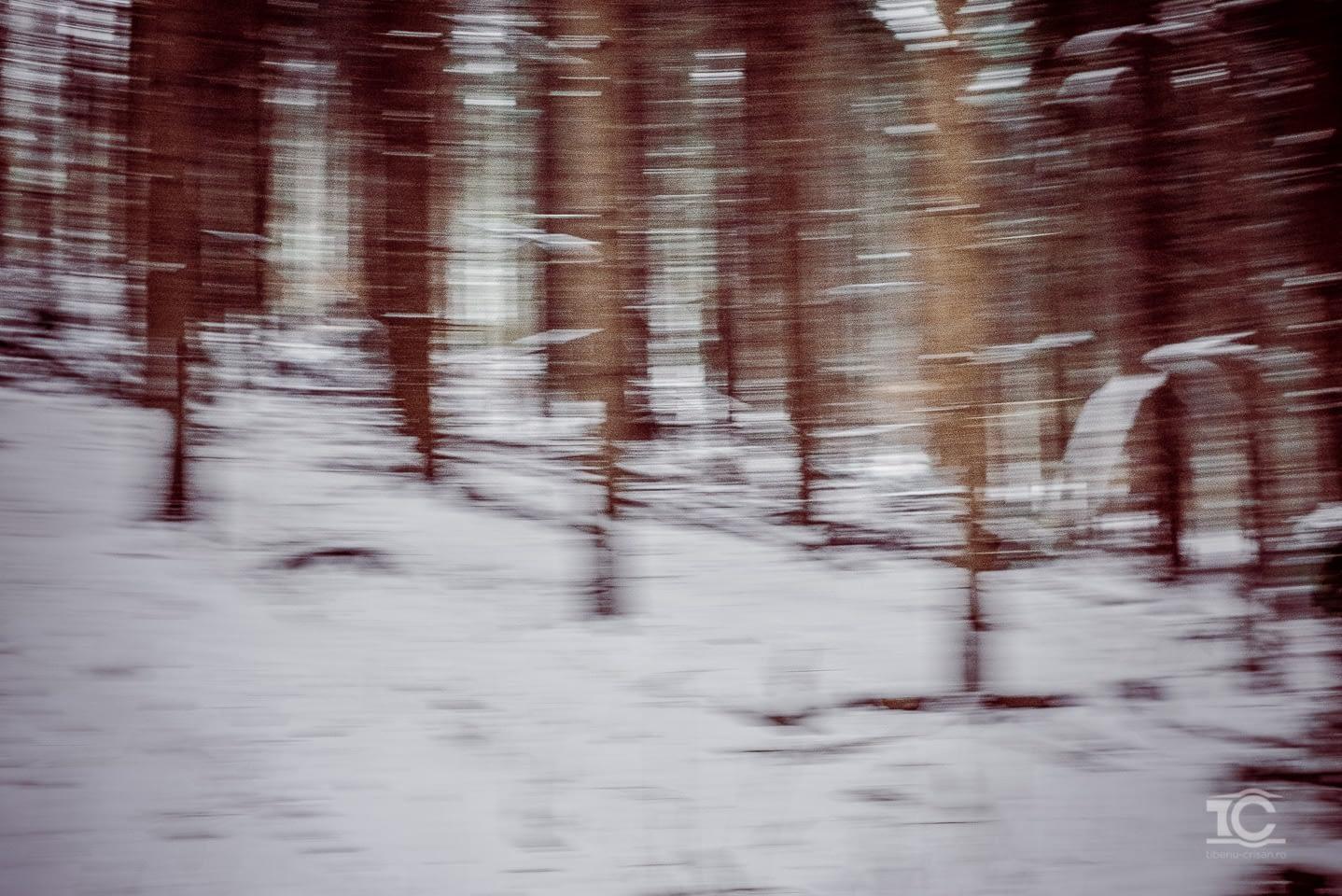 iarna-feleacu-003