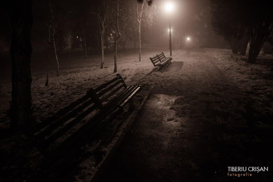 noapte-cu-ceata-in-parc-29