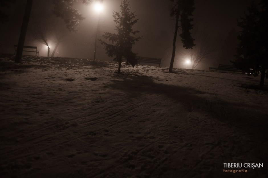 noapte-cu-ceata-in-parc-27