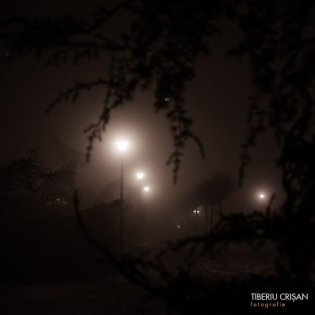 noapte-cu-ceata-in-parc-24