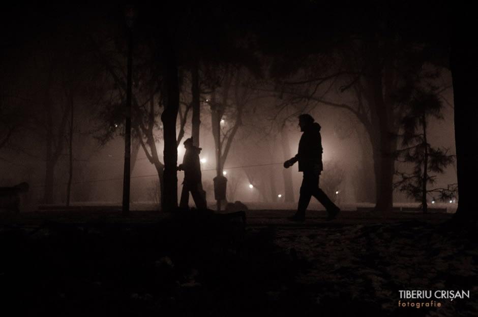 noapte-cu-ceata-in-parc-13