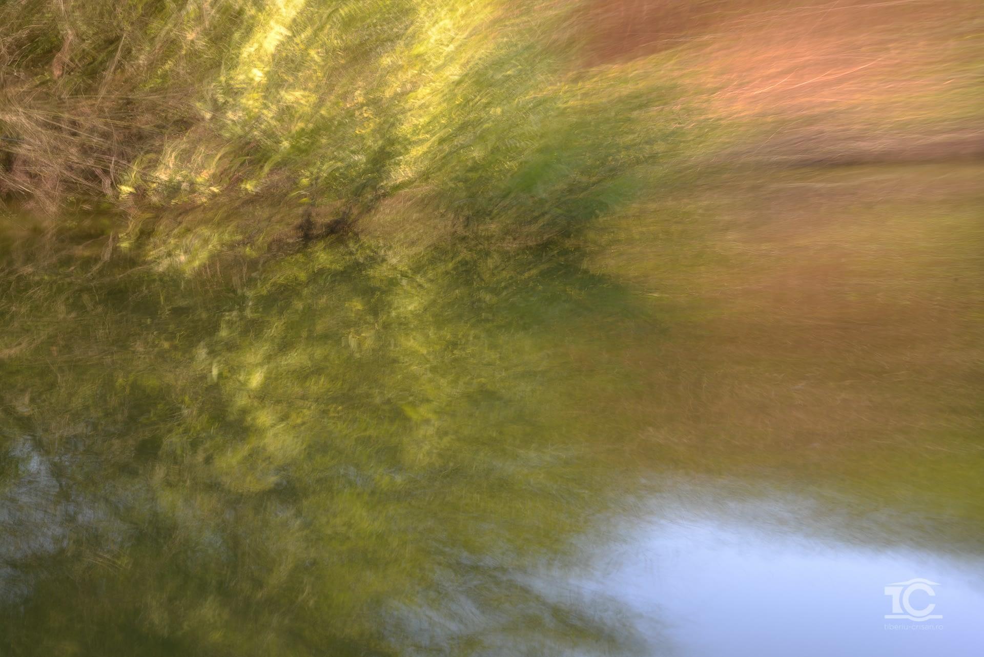 In miscare pe un canal din Delta Dunarii