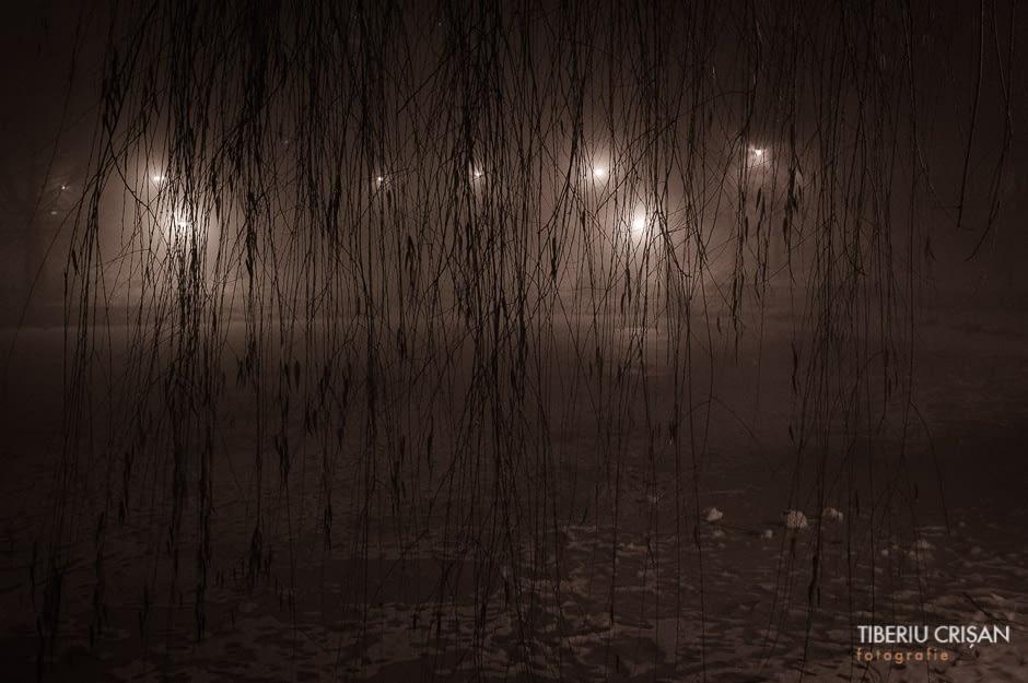 noapte-cu-ceata-in-parc-6