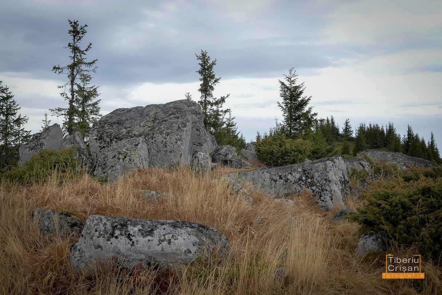 pietrele-marunte-004