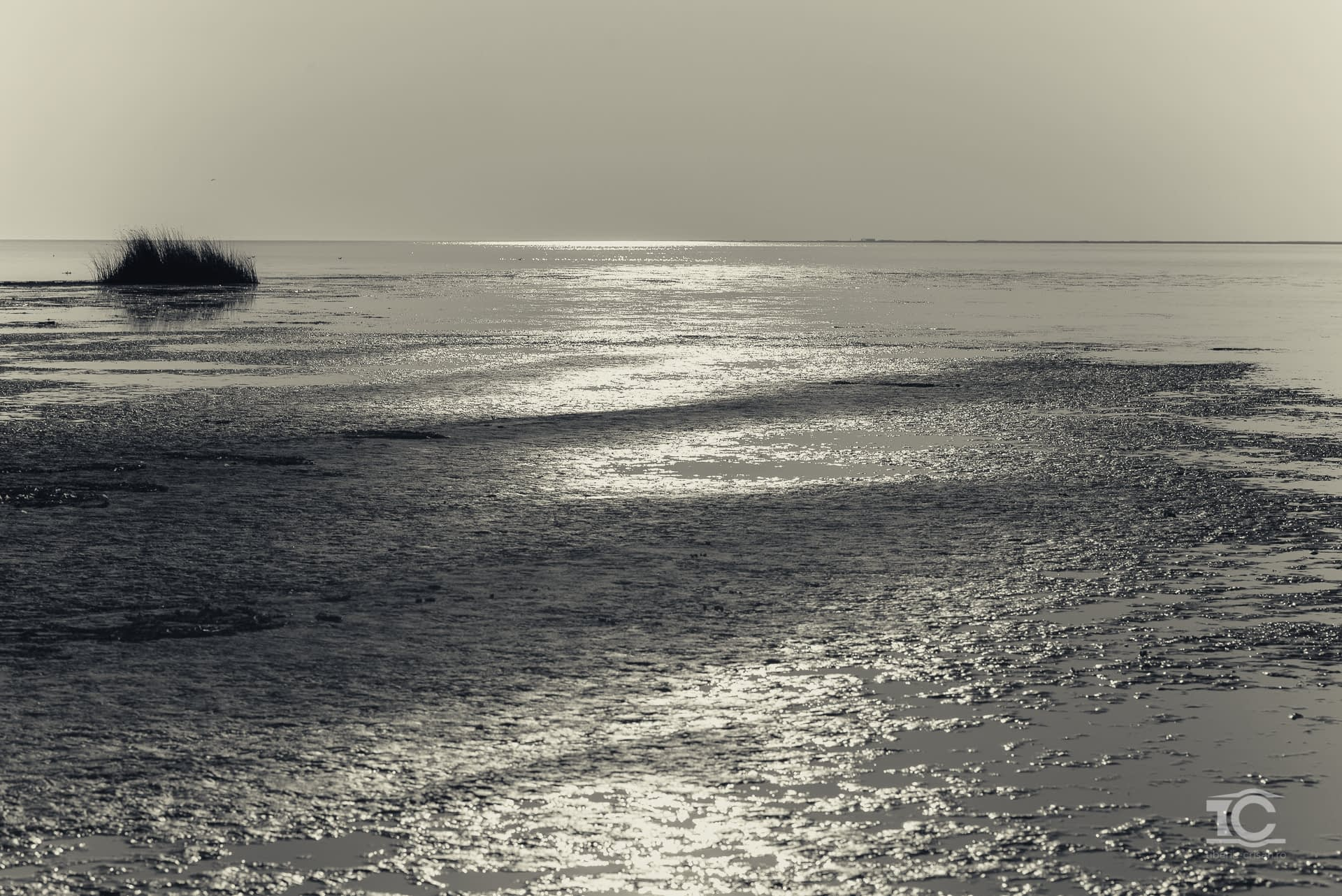 Apele insulei Sachalin