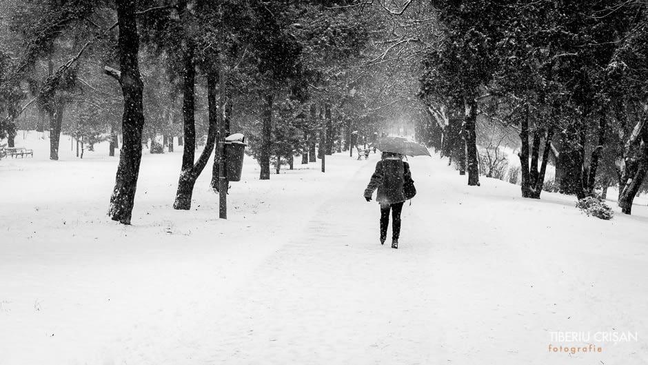 Femeie cu umbrela pe ninsoare