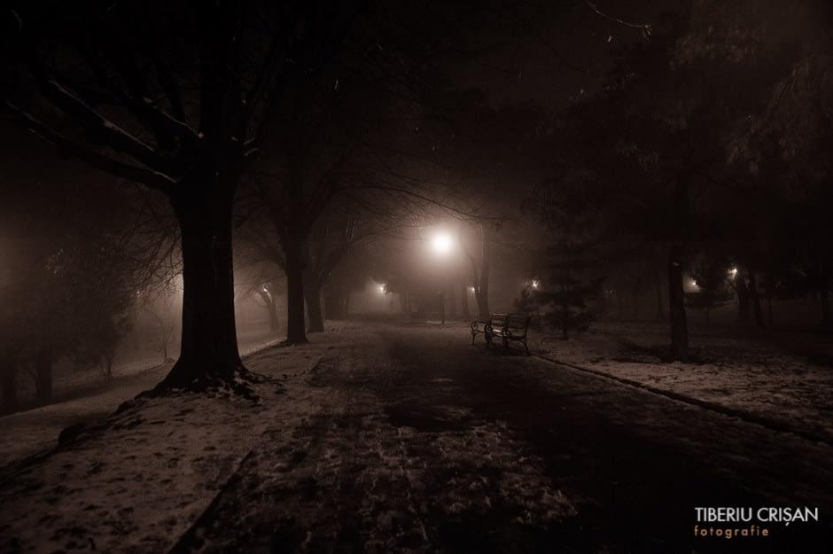 noapte-cu-ceata-in-parc-20