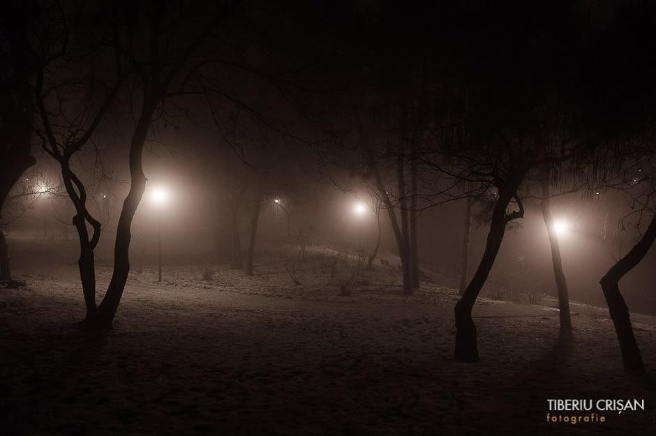 noapte-cu-ceata-in-parc-4
